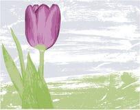 Fundo floral sujo Imagem de Stock Royalty Free