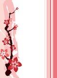 Fundo floral vermelho Foto de Stock