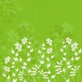 Fundo floral, vetor Fotografia de Stock Royalty Free