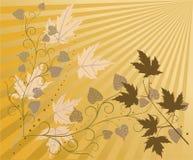 Fundo floral - vetor Fotografia de Stock Royalty Free