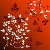 Fundo floral - vetor Fotos de Stock