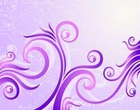 Fundo floral violeta Fotos de Stock