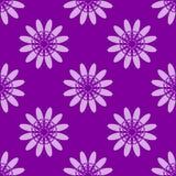 Fundo floral violeta do teste padrão Imagem de Stock Royalty Free
