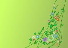 Fundo: flores, folhas e lianas Fotos de Stock