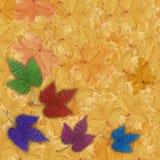 Fundo, folhas coloridas Fotos de Stock