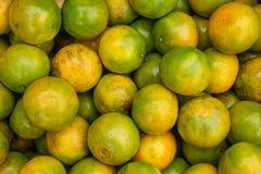 Fundo fresco das laranjas imagens de stock