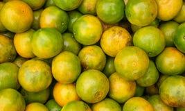 Fundo fresco das laranjas Tangerina fotos de stock