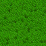 Fundo fresco do vetor da grama Campo de grama verde, textura erval Imagem de Stock