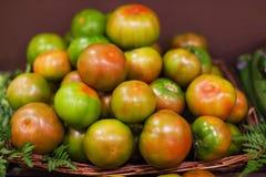 Fundo fresco dos tomates Vários tomates maduros orgânicos em março Imagens de Stock Royalty Free