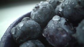 Fundo fresco molhado da uva-do-monte tiro do macro do est?dio filme
