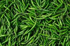 fundo fresco verde das pimentas de pimentão Foto de Stock Royalty Free