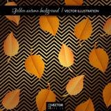 Fundo geométrico do outono dourado com folhas Imagem de Stock