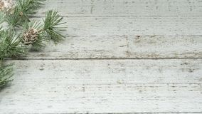 Fundo glittery do ramo do cone do pinho, úteis simples para encabeçamentos e conceitos, madeira whitewashed fotografia de stock