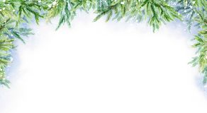 Fundo horizontal do inverno abstrato da aquarela Filiais do abeto Paisagem do inverno ilustração royalty free