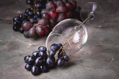 Fundo horizontal do fundo do vidro de vinho tinto e da uva vermelha com uva vermelha e vidro de vinho Foto de Stock Royalty Free