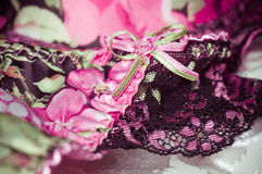 Fundo laçado feminino dos roupa íntima Foto de Stock Royalty Free