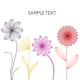 Fundo linear das flores Ilustração Stock