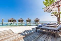 Fundo luxuoso da praia As férias e o feriado com palmeiras e a ilha tropical encalham Fotografia de Stock