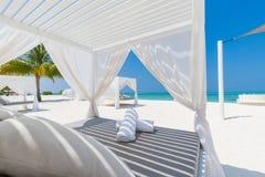 Fundo luxuoso da praia Barraca da praia e vadios brancos e fundo do mar e palmeiras azuis e céu azul fotos de stock