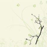 Fundo mágico chinês da flor Fotografia de Stock