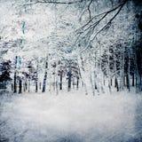 Fundo mágico do inverno com floresta Imagens de Stock Royalty Free