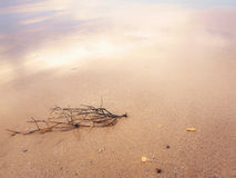 Fundo macio da praia Foto de Stock Royalty Free