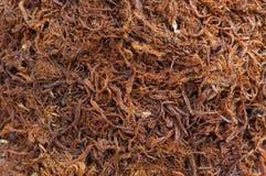 Fundo marrom seco Shredded da carne de porco, preservação de alimento asiática fotografia de stock