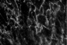 Fundo modelado preto e branco de mármore natural abstrato da textura para o projeto do papel de parede dos interiores imagens de stock royalty free