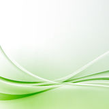 Fundo moderno do certificado do sumário da beira da onda verde ilustração do vetor