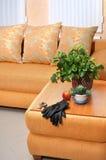 Fundo moderno do ror do quarto da sala de estar do estilo Fotos de Stock Royalty Free