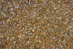 Fundo molhado do teste padrão das pedras do litoral Imagens de Stock Royalty Free