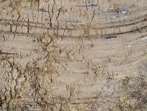 Fundo molhado e marcado de EarthTextured imagens de stock