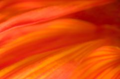 Fundo morno abstrato de tons vermelhos, alaranjados e amarelos imagens de stock