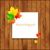 Fundo natural com placa de madeira e outono Fotografia de Stock Royalty Free