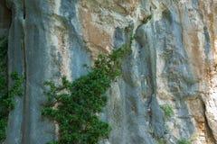 Fundo natural da parede de pedra áspera fotografia de stock