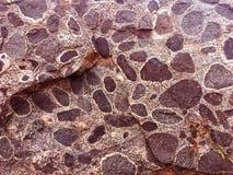 Fundo natural da textura - abandone a pedra com pontos imagens de stock royalty free