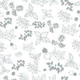 Fundo natural das folhas ilustração royalty free