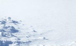 Fundo natural do inverno com neve Fundo de Snowy White fotografia de stock royalty free