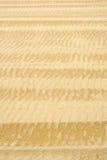 Fundo ondulado da areia Imagem de Stock