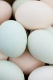 Fundo orgânico dos ovos Fotografia de Stock Royalty Free
