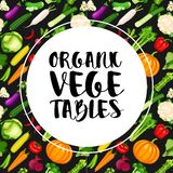 Fundo orgânico dos vegetais ilustração do vetor