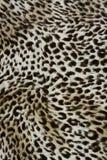 Fundo ou textura do teste padrão do animal selvagem Fotos de Stock