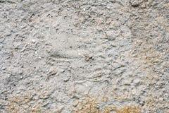 Fundo ou textura velha da parede da cor Imagem de Stock