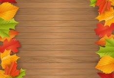 Fundo - outono - folhas - folha Imagem de Stock