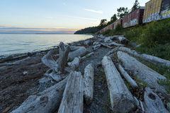 Fundo pacífico do céu da paisagem do oceano do beira-mar do trem Foto de Stock