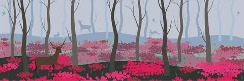 Fundo para bandeiras, página da web e a outra floresta feericamente com imagem do vetor dos animais selvagens ilustração royalty free
