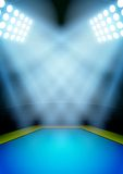 Fundo para o estádio da ginástica da noite dos cartazes dentro Fotografia de Stock Royalty Free