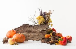 Fundo para o feriado da ação de graças com colheita dos vegetais Fotografia de Stock