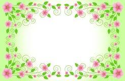 Fundo para um projeto com flores cor-de-rosa Imagens de Stock Royalty Free