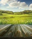 Fundo pastoral do verão com pranchas de madeira Imagens de Stock